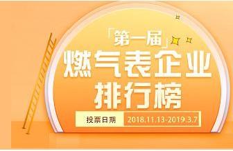第一届中国燃气表企业排行榜