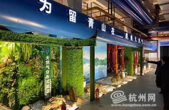 浙江首个天然气分布式能源电力上网项目在青山湖投运