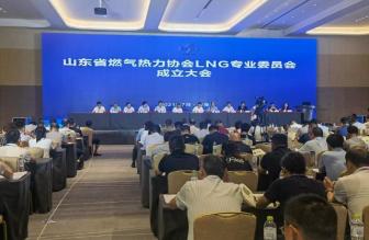 2021年液化天然气(LNG)技术与发展论坛召开